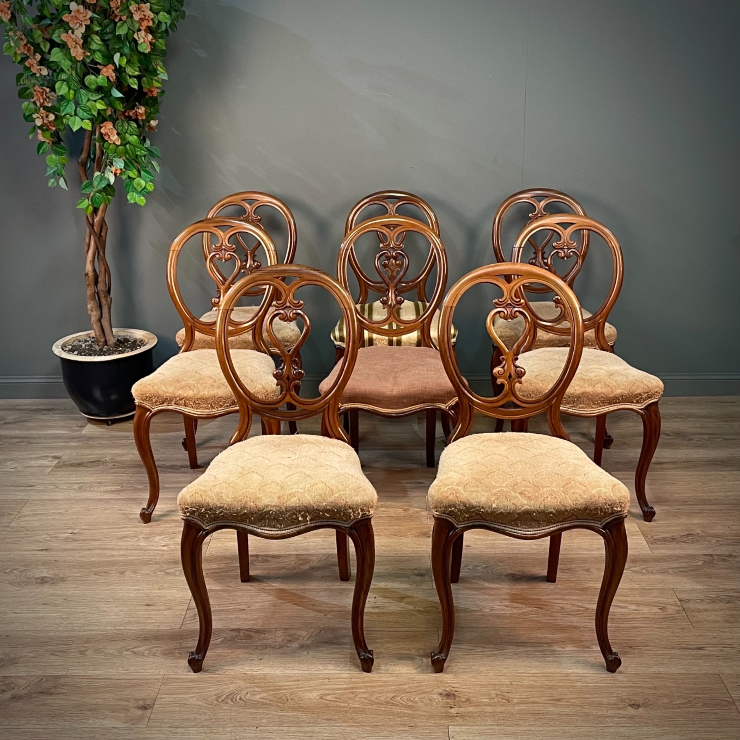 set of eight antique victorian rosewood balloon back dining chairs reupholstery