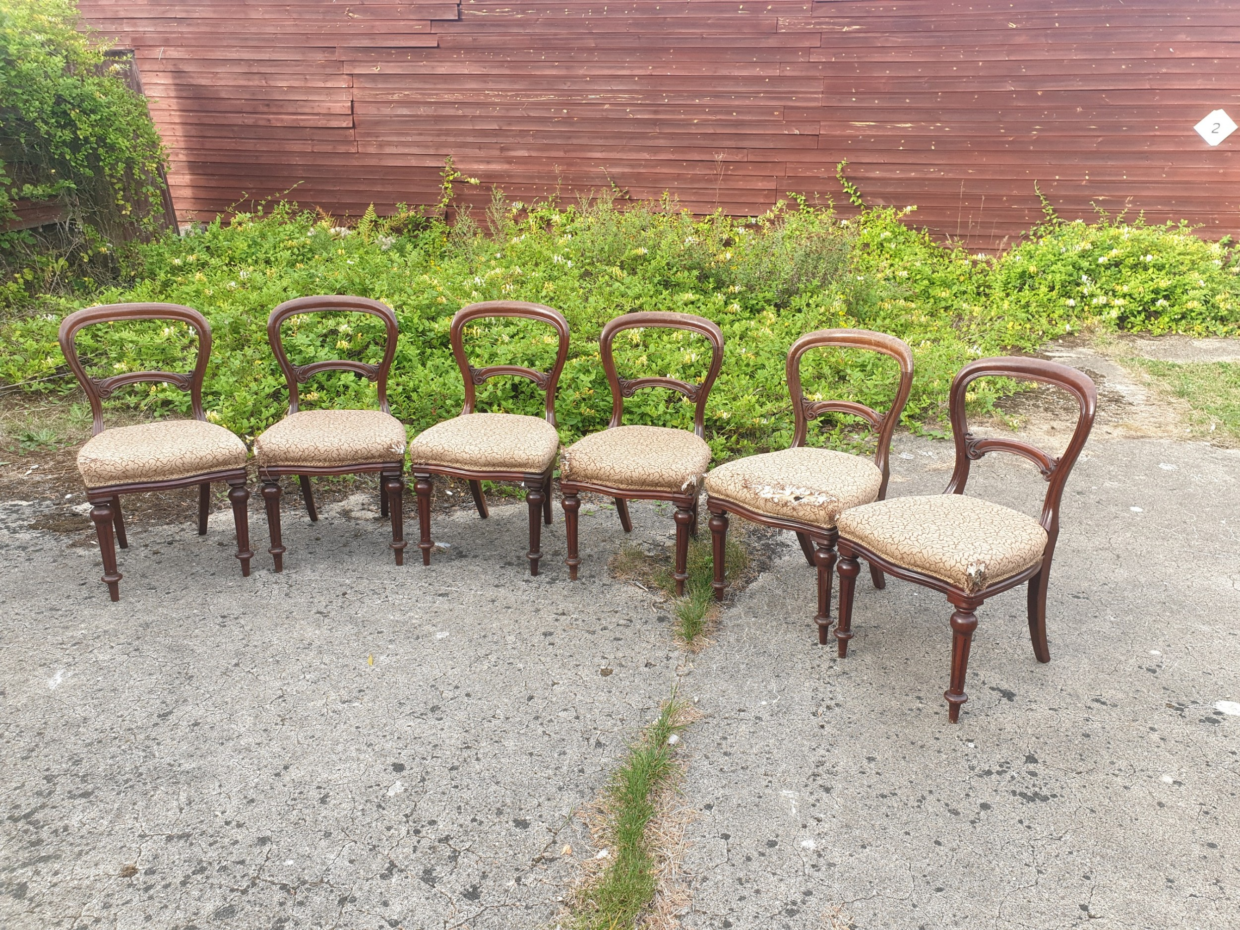 set of 6 mid victorian mahogany balloon back dining chairs