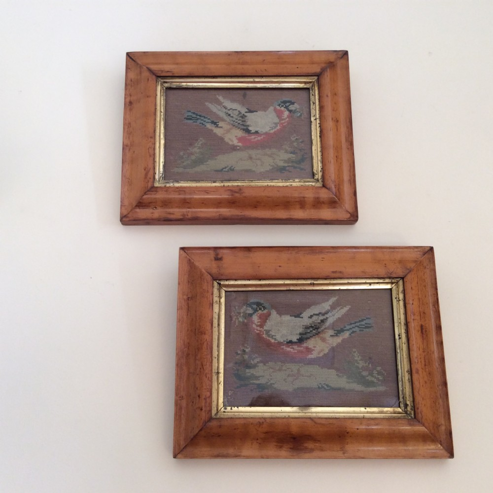 pair of maple frames with origimneedlework pictures of finches c1840