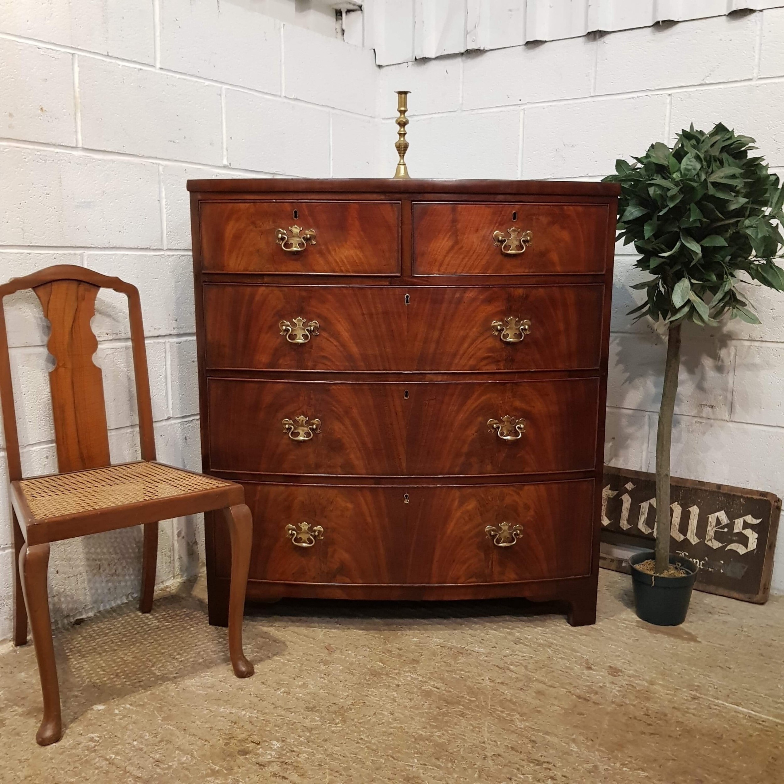 antique regency mahogany bow front chest of drawers c1820