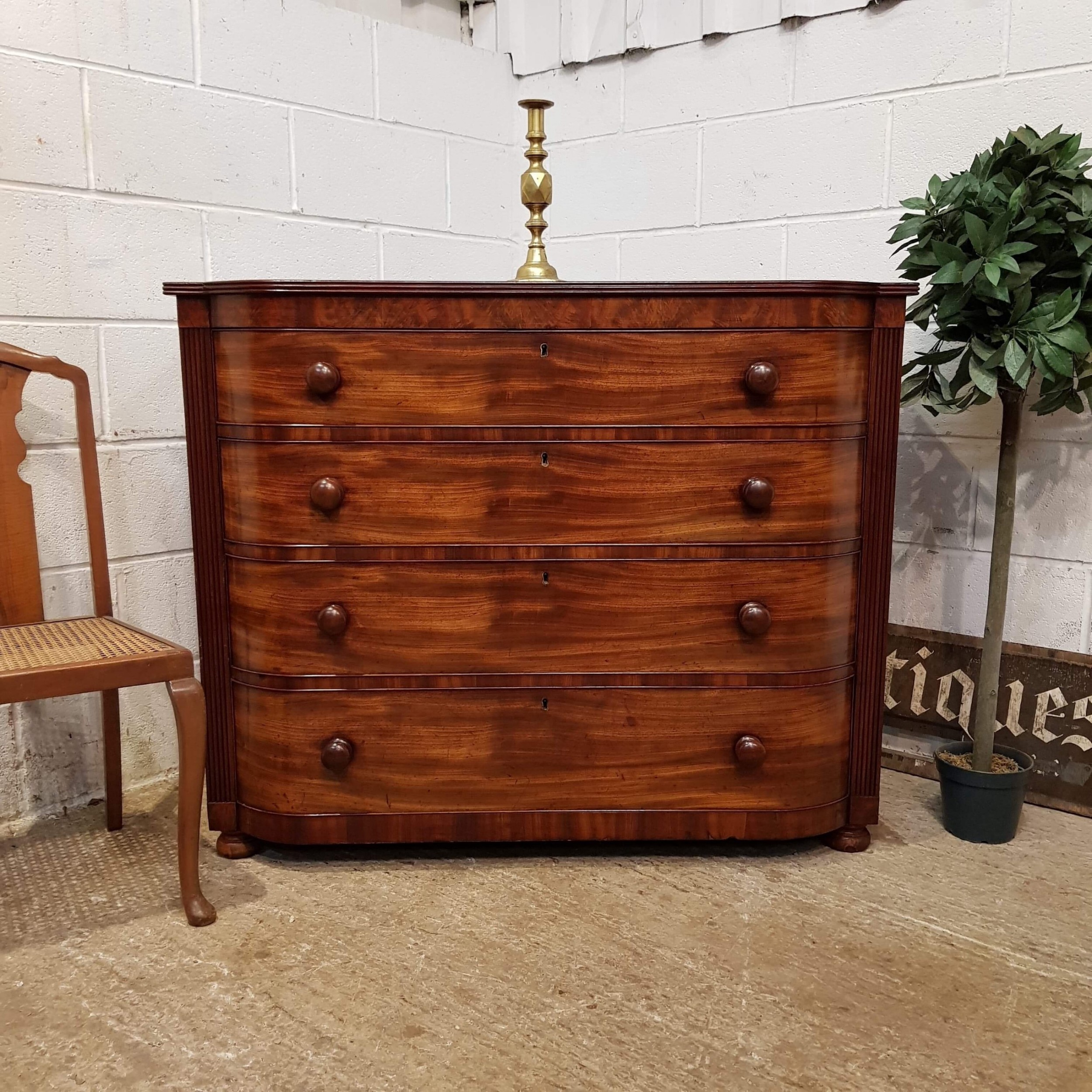 antique william 1v bow front mahogany chest of drawers c1830