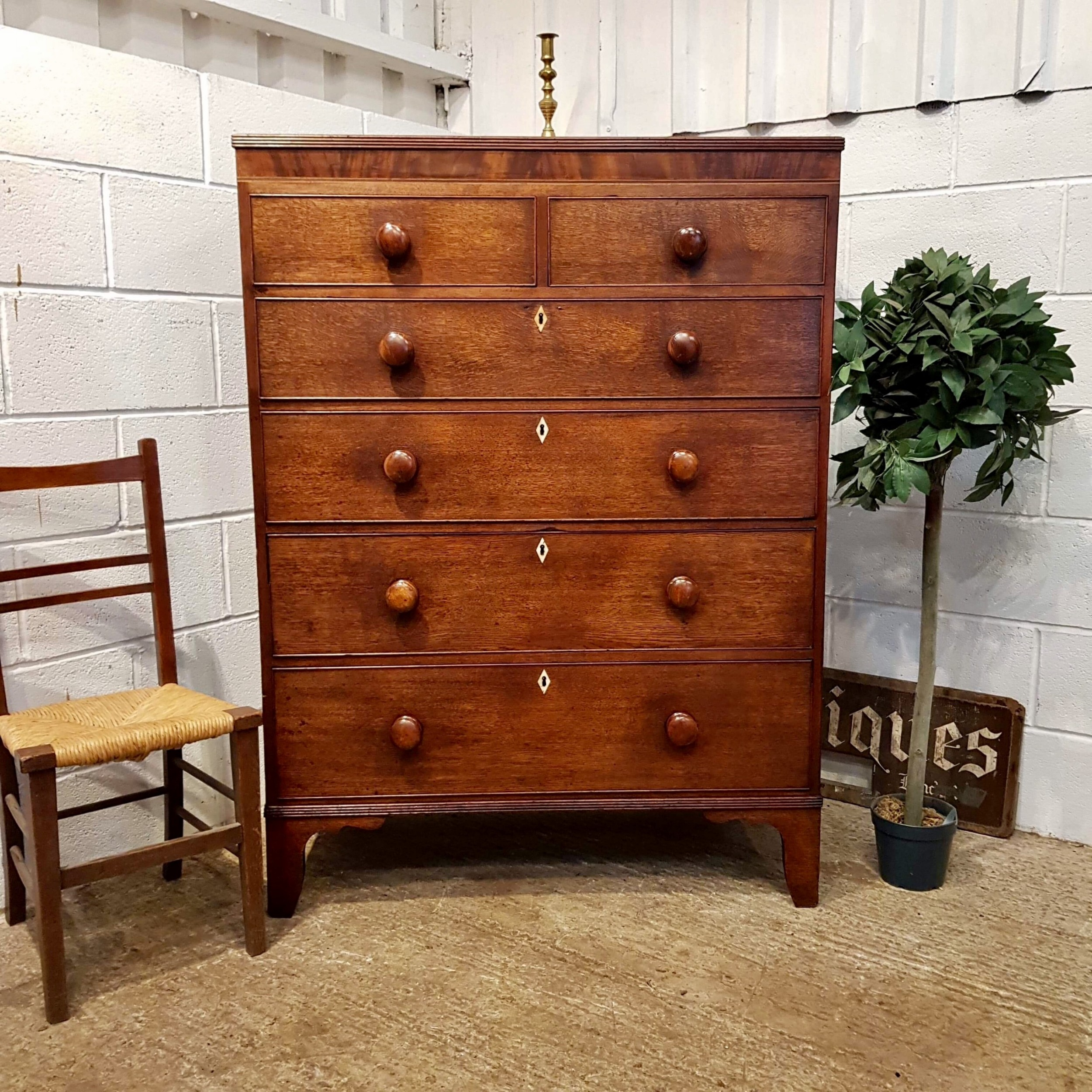 antique regency oak mahogany tall chest of drawers c1820