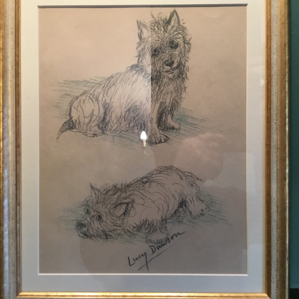 study of 2 cairn terriers by lucy dawson c 1930
