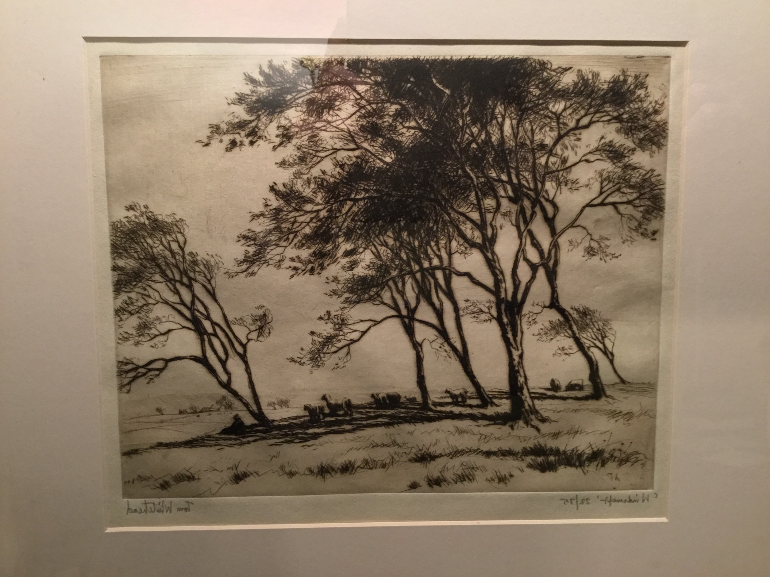 windswept signed limited edition print by english landscape artist tom whitehead c 1920