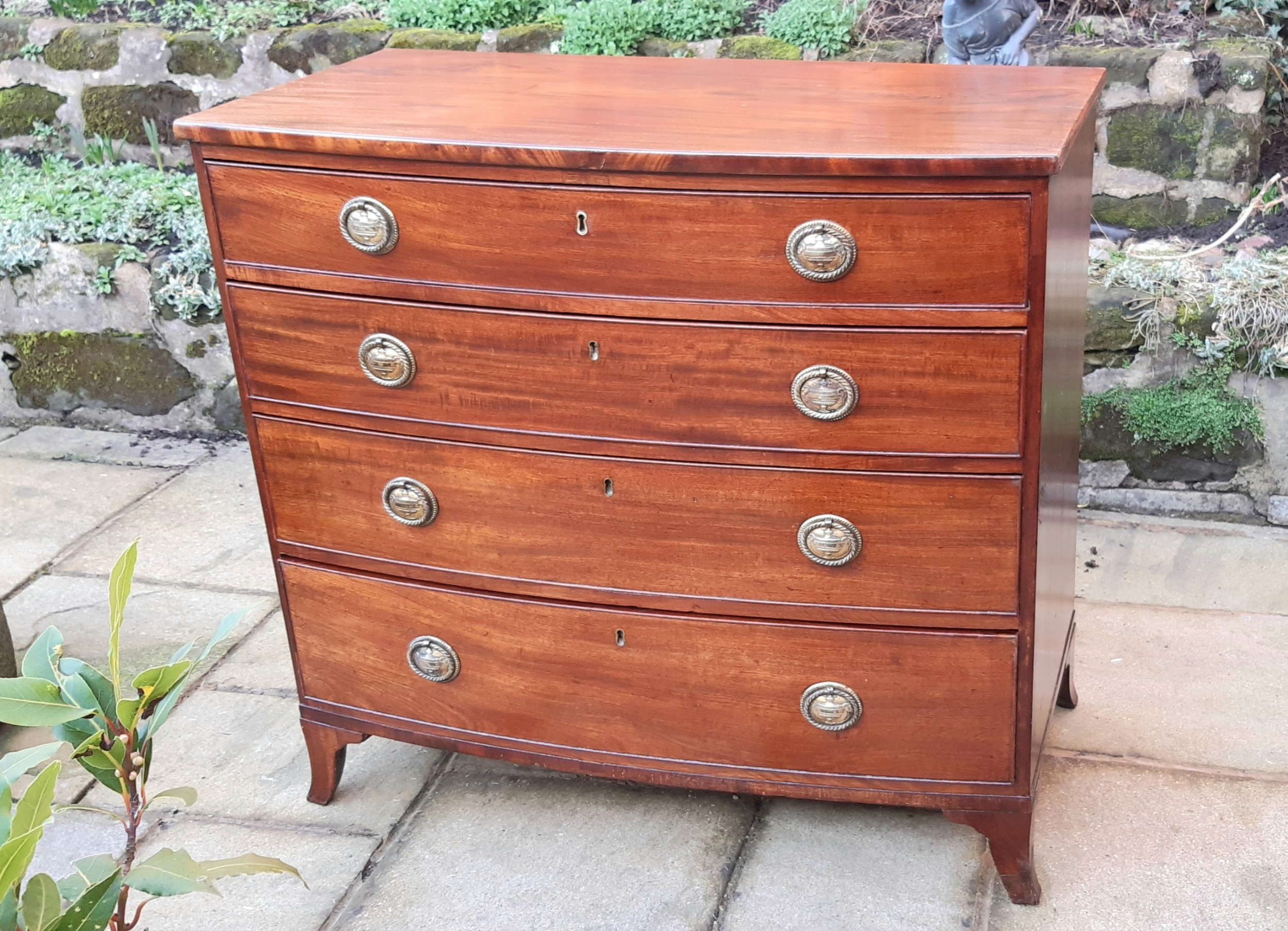 super small regency mahogany bow front chest of drawers
