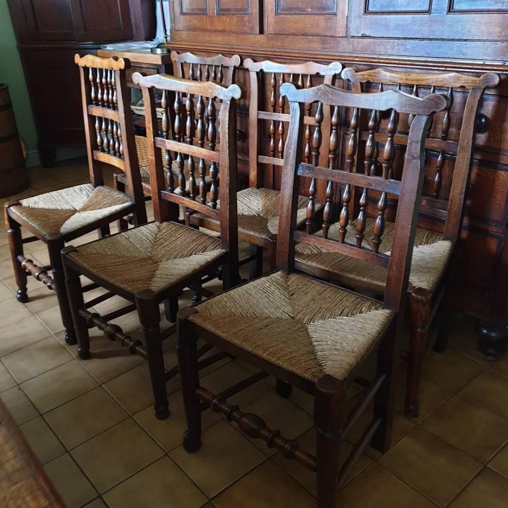 6 antique ash and elm 19thc lancashire ear back single chairs