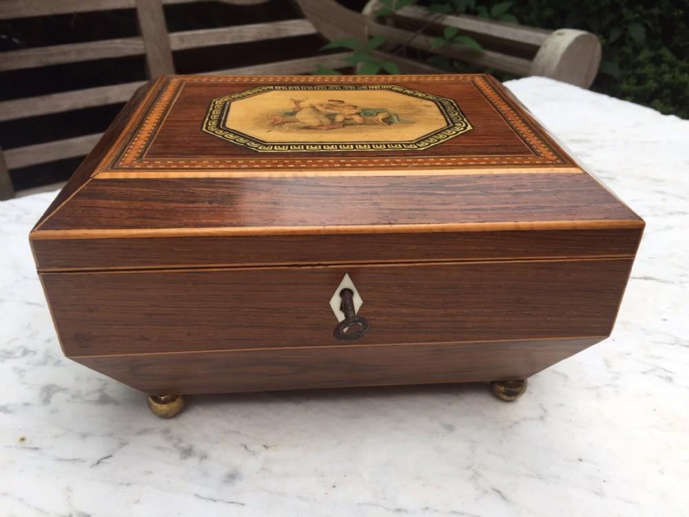 early c19th regency period rosewood ladies sewing casket