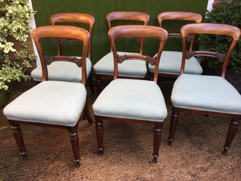 set of 6 c19th william iv period mahogany dining chairs