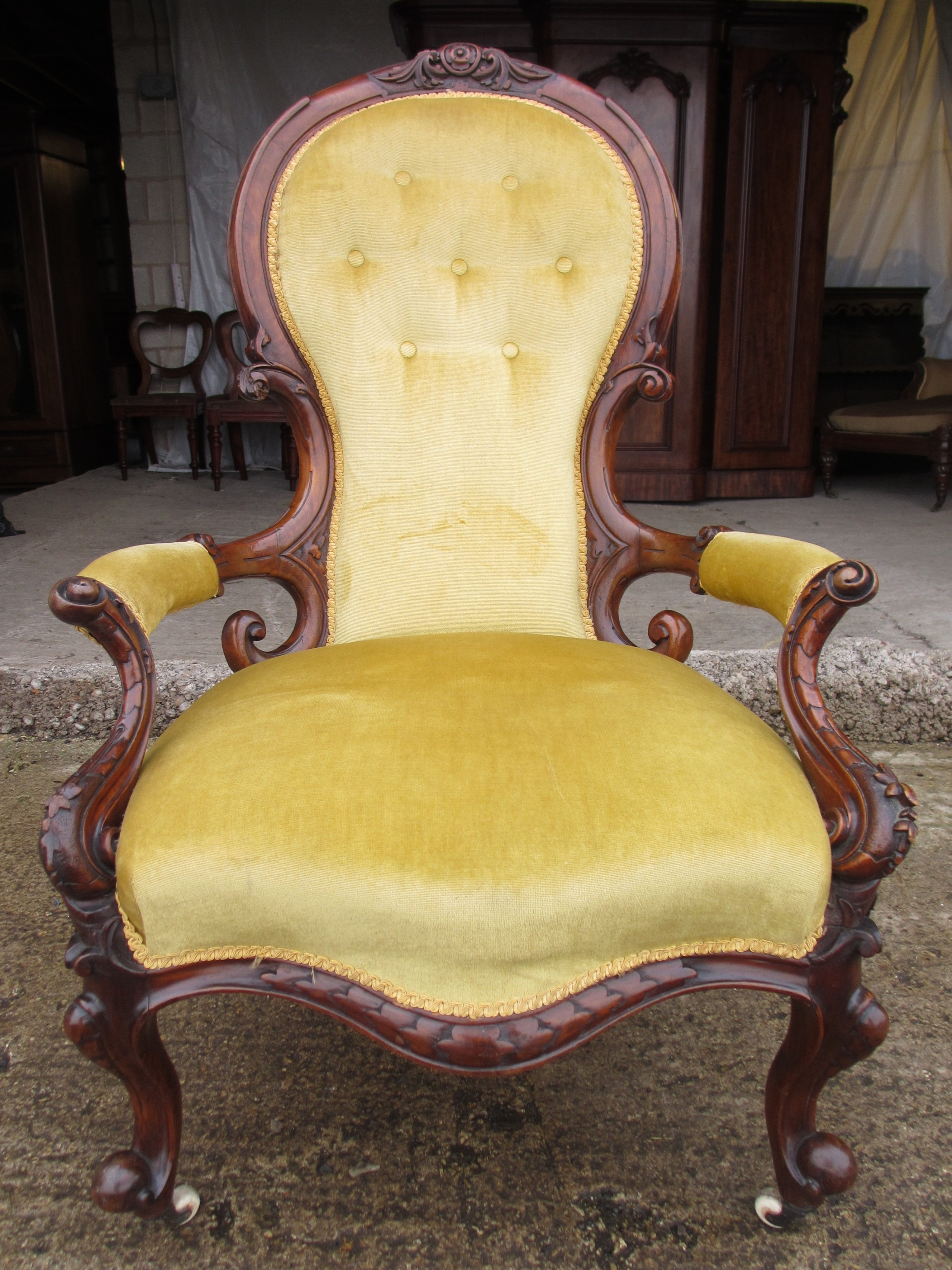 victorian walnut carved show wood button spoon back open arm chair