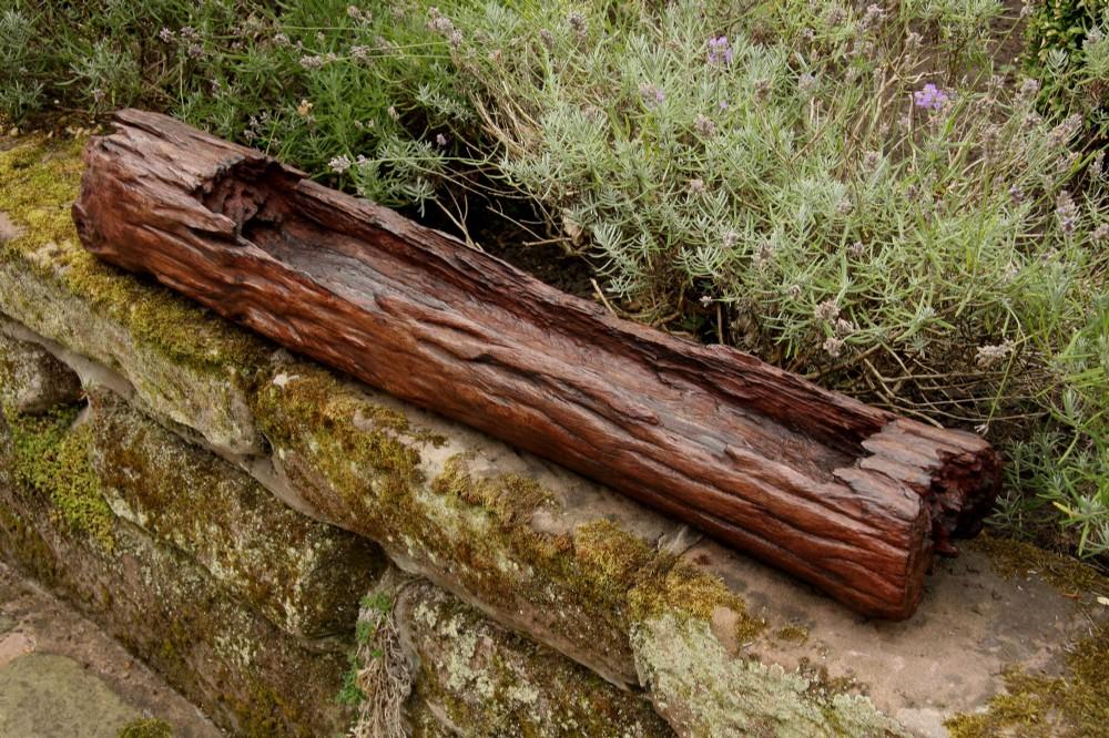 ancient wooden log garden planter