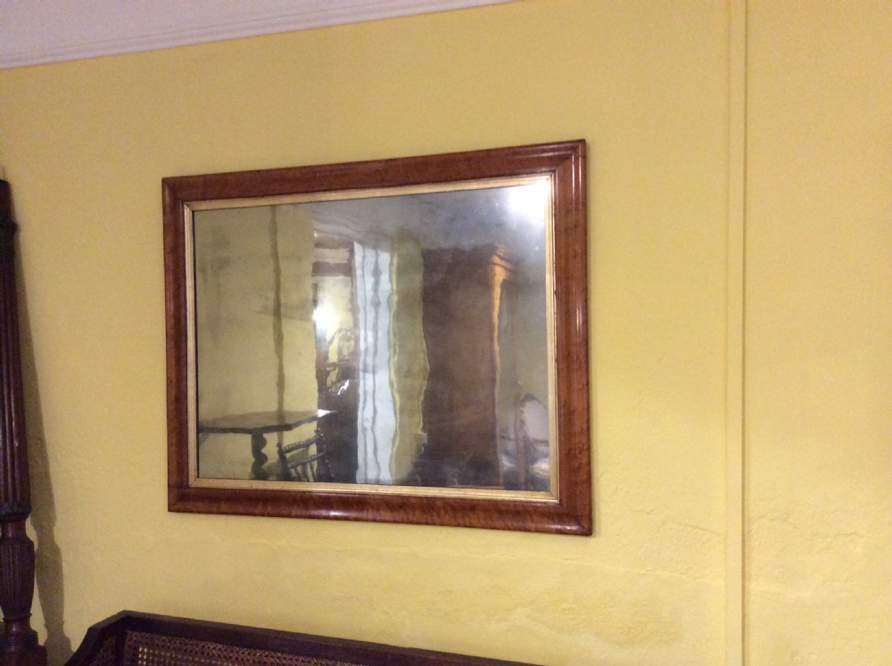 19thc pair of birds eye maple frames with tinted mirrors