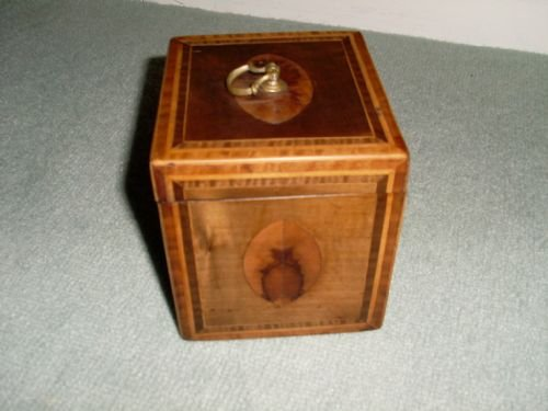 a regency single tea caddy - photo angle #3