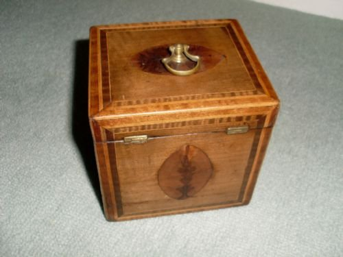 a regency single tea caddy - photo angle #4