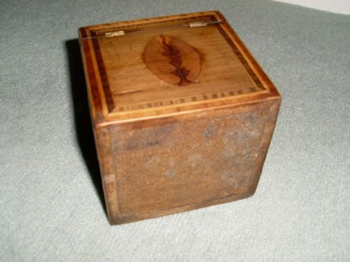 a regency single tea caddy - photo angle #5