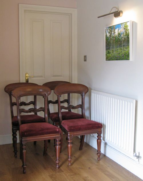 Antique Mahogany Victorian Dining Chairs The Uk S Largest Antiques Website