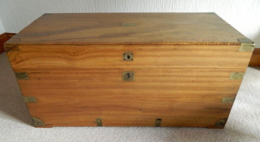 Brass bound camphor wood trunk sellingantiques