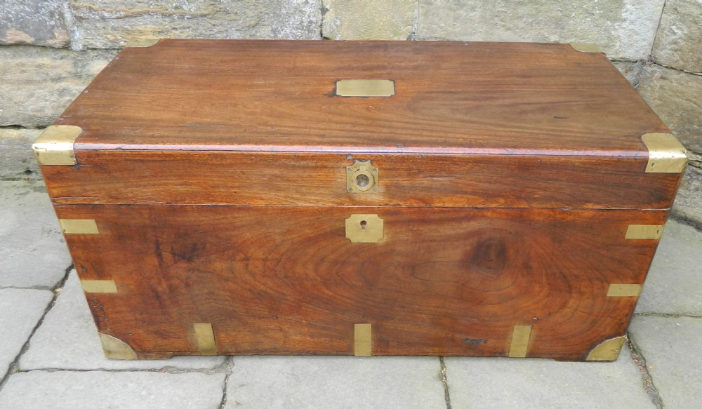 Brass bound camphor wood trunk sellingantiques
