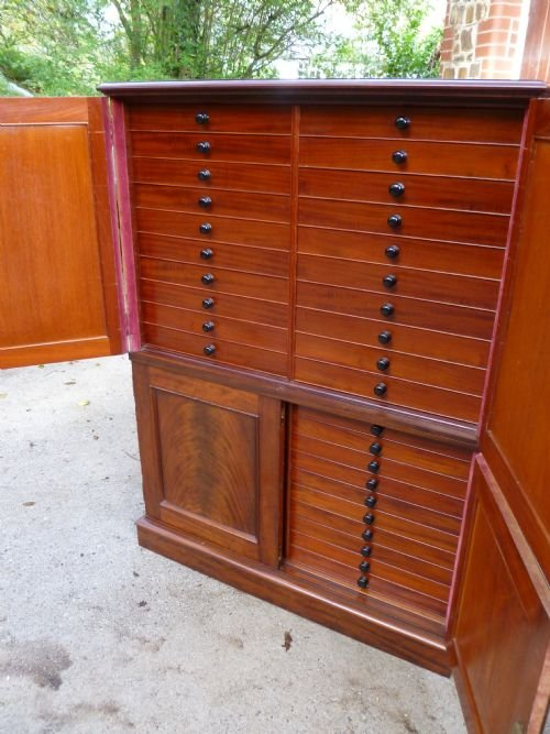 superb 40 drawer mahogany collectors cabinet