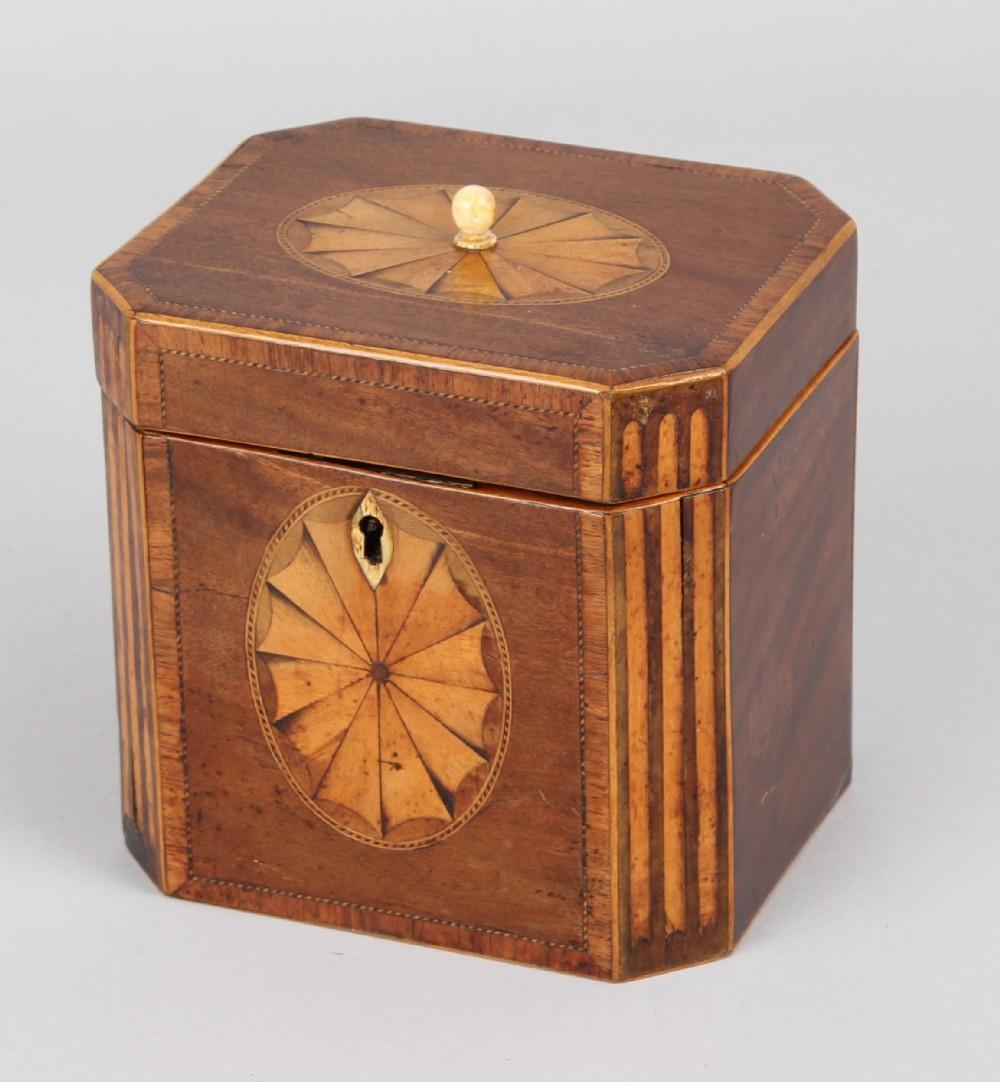 george iii mahogany teacaddy