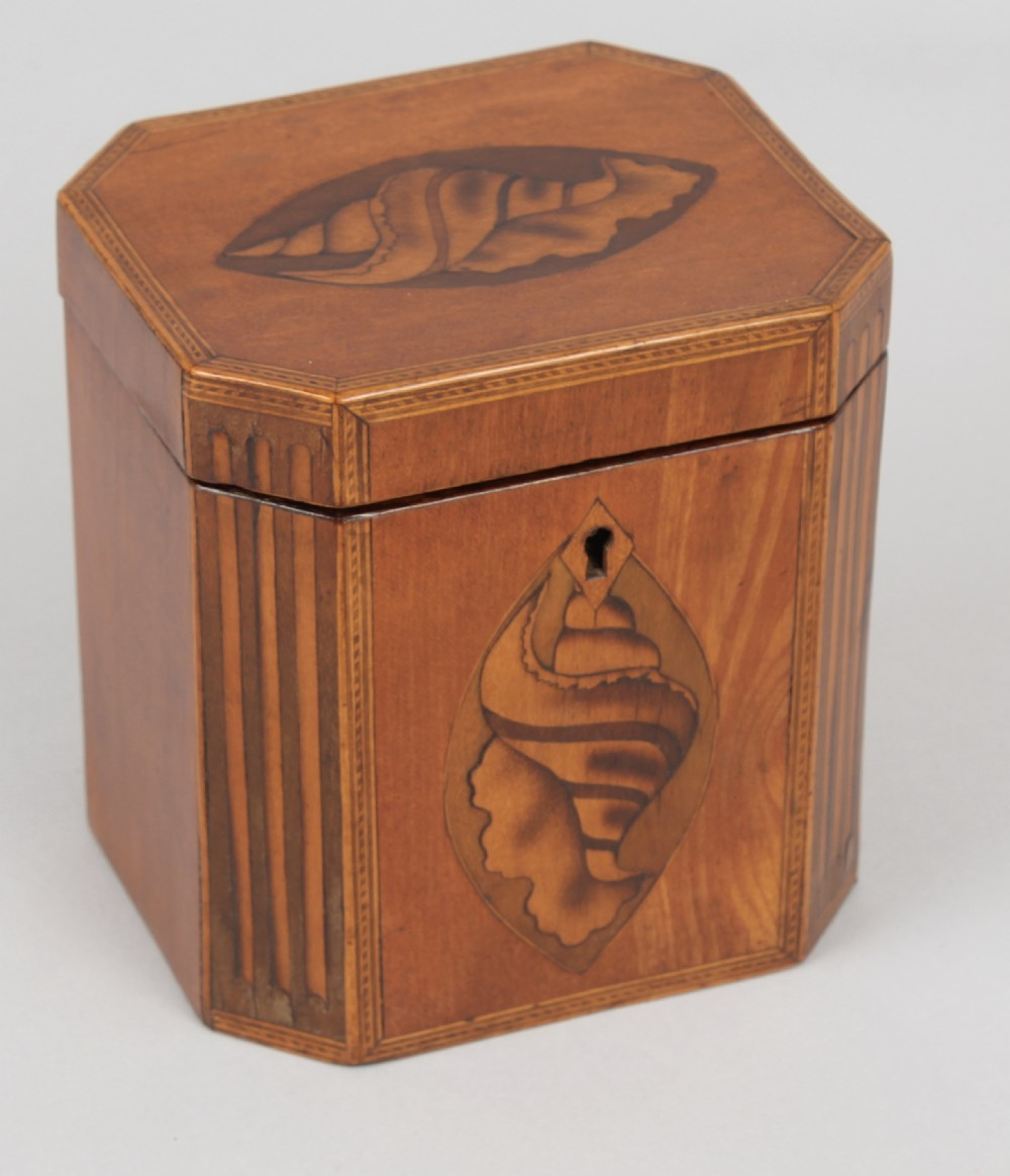george iii period satinwood teacaddy