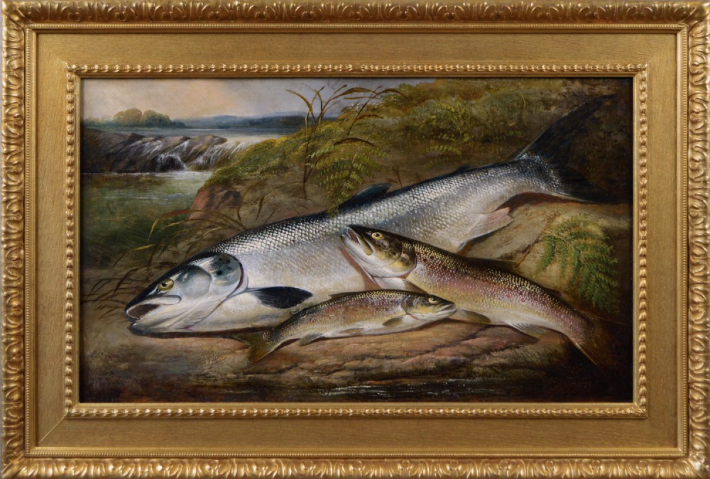 sporting still life oil painting of salmon and trout by henry leonides rolfe