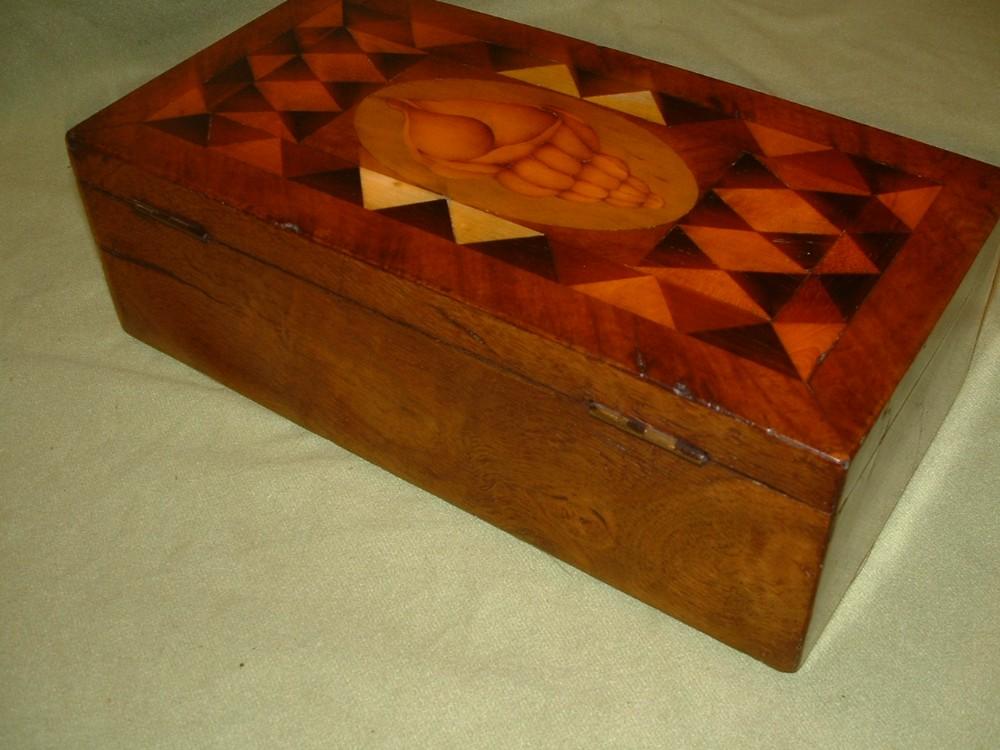Georgian Inlaid Shell Specimen Wood Box C1815 583602