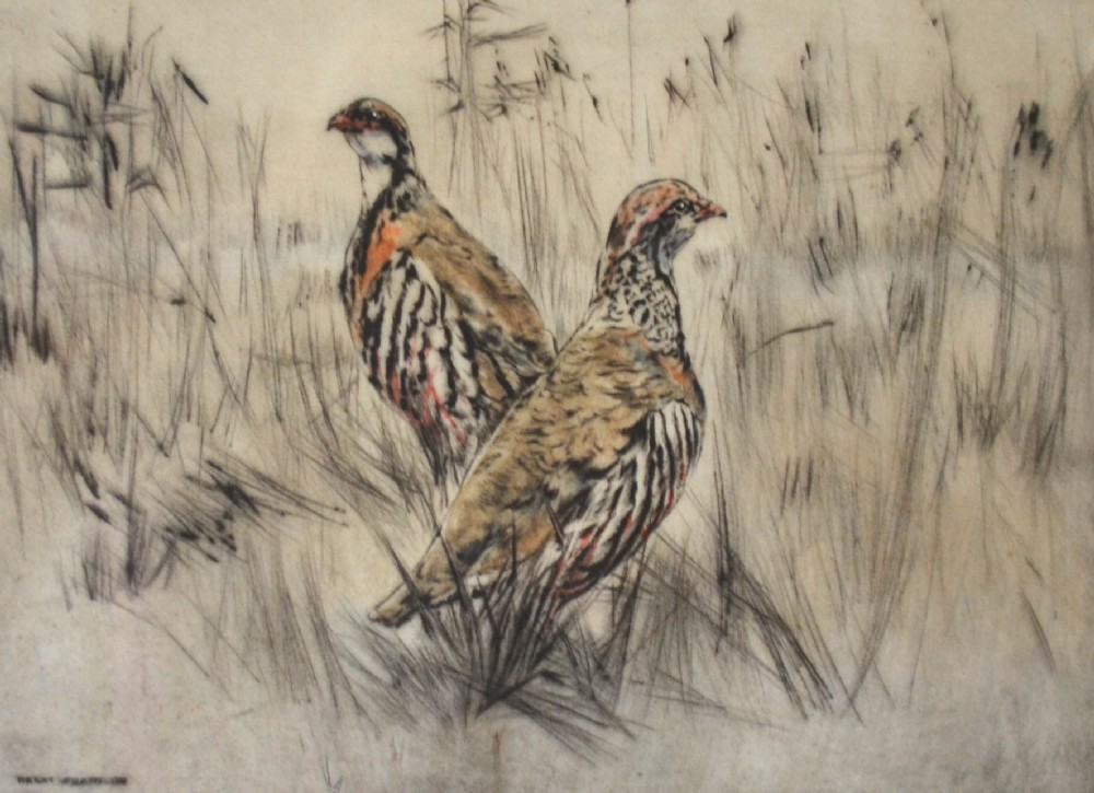 henry wilkinson dry point coloured etching c 1950 pair game birds no 35100