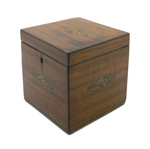 george iii shell inlaid satinwood tea caddy