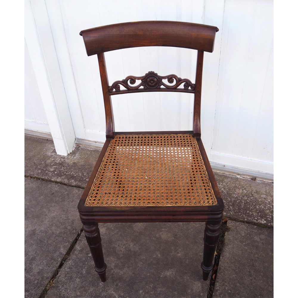 william iv rosewood single dining chair
