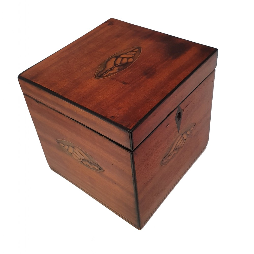 george iii shell inlaid satinwood tea caddy