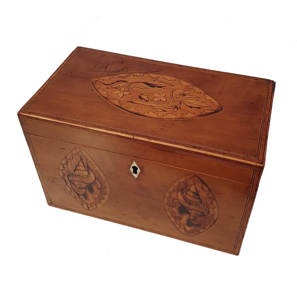 fine george 3rd satinwood tea caddy