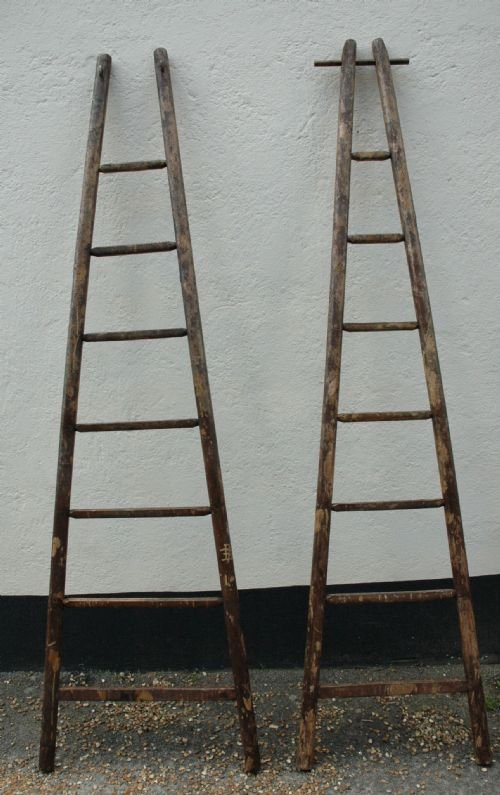 Fruitwood Orchard Ladders C 1900 164843