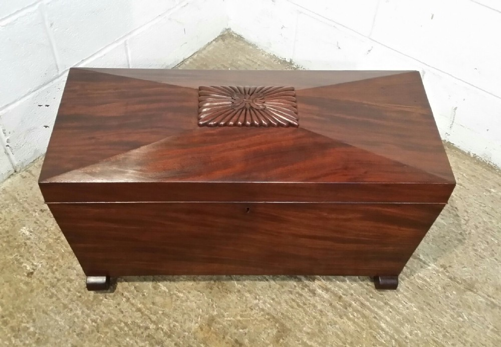 antique regency cuban mahogany sarcophagus shaped wine cooler cellarette c1820