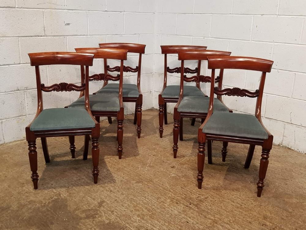 antique set six william 1v mahogany dining chairs c1830