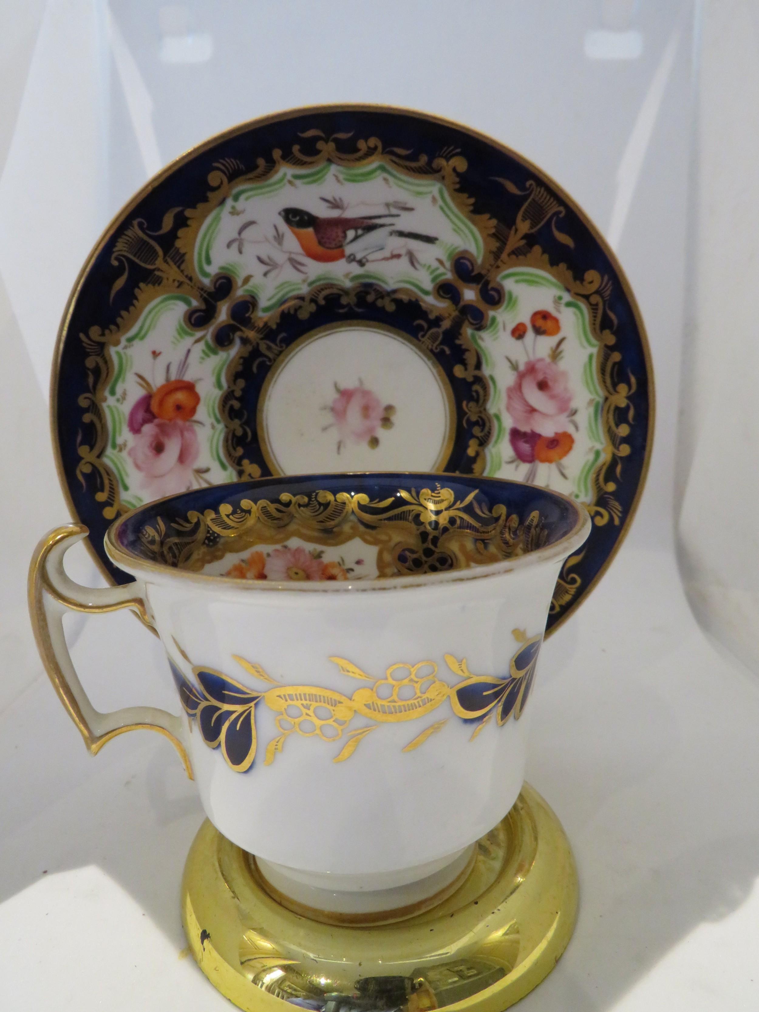 1830 coalport cup saucer hand painted exotic birds