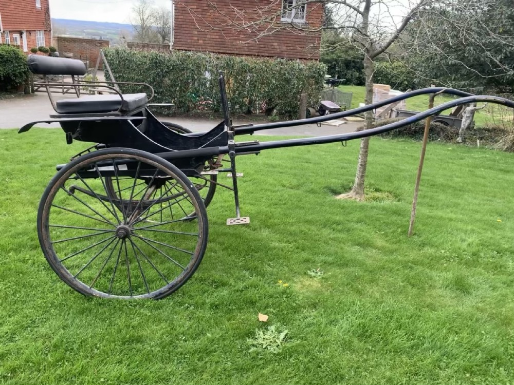 vintage pony trap dressage driving carriage