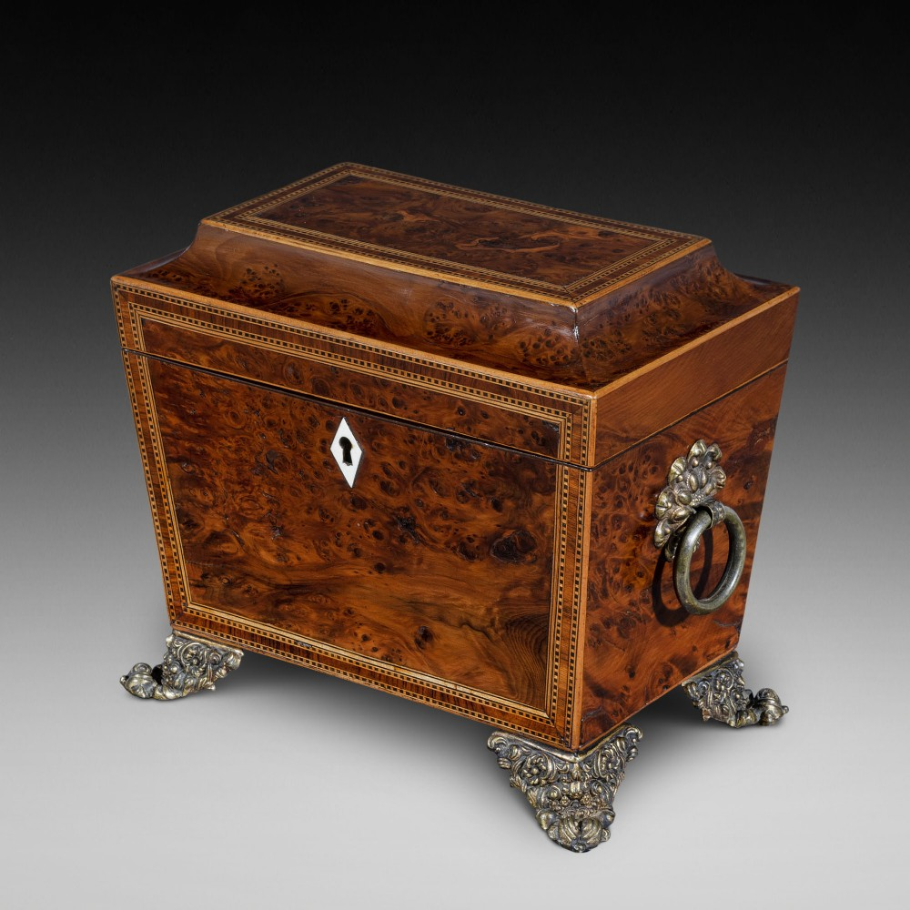 regency burr elm tea caddy