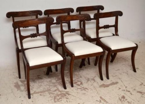 set of 6 antique regency mahogany dining chairs with sabre legs - Set Of 6  Antique - Antique Mahogany Dining Chairs Antique Furniture