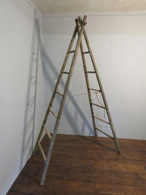 antique french fruit picking ladders in original paint