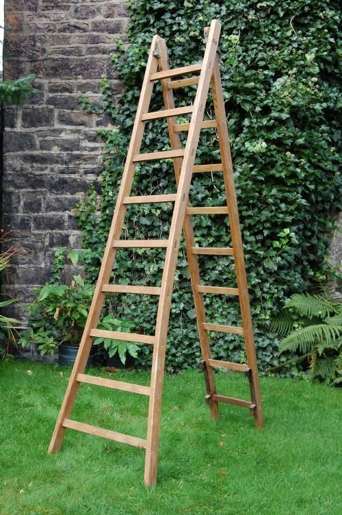 french fruit ladders
