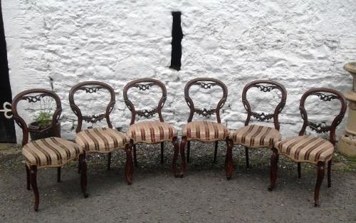 a good set of 6 victorian carved mahogany balloon back dining chairs reduce by 25