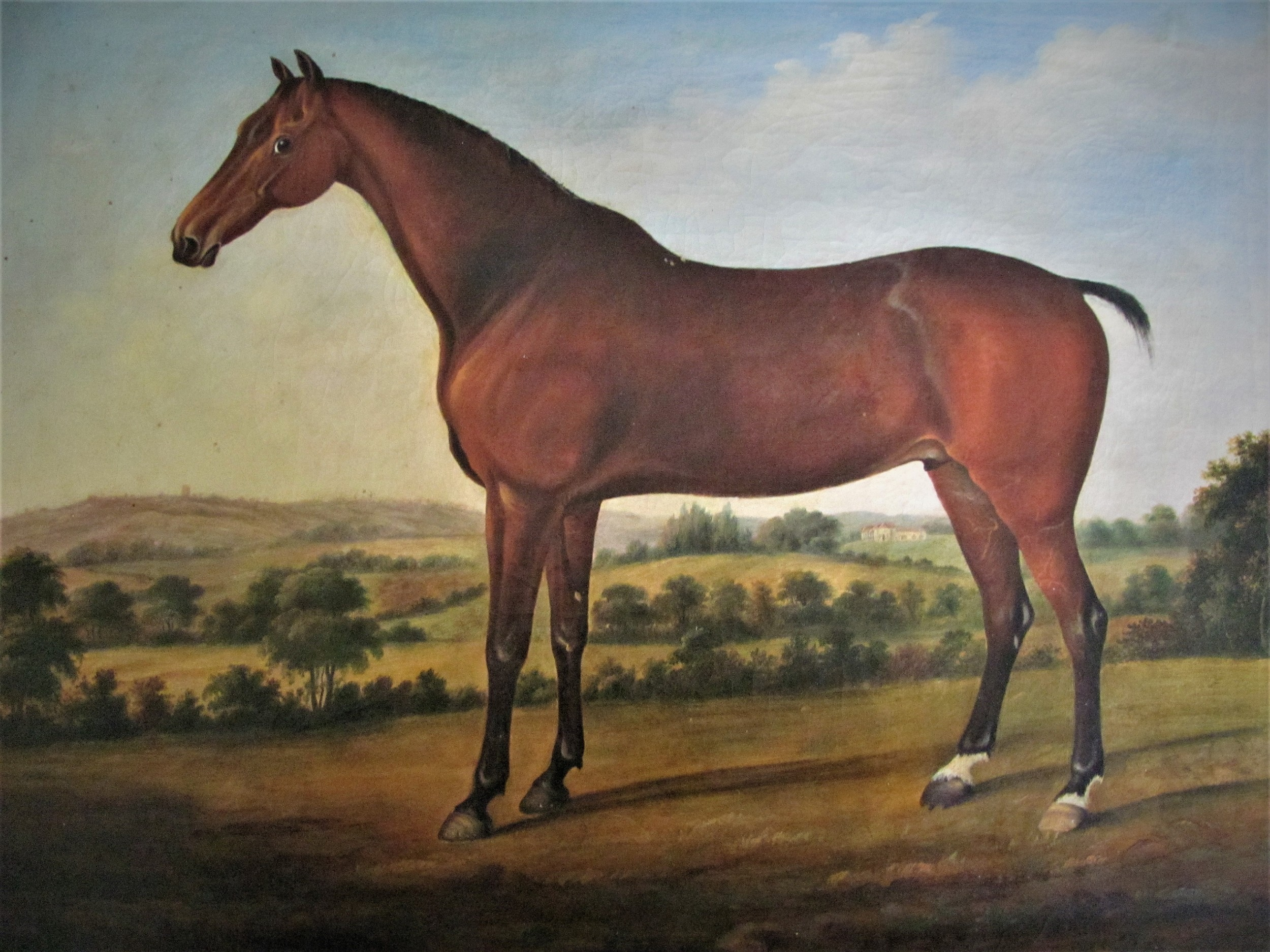 horse in landscape circle george stubbs 18th century oil old master
