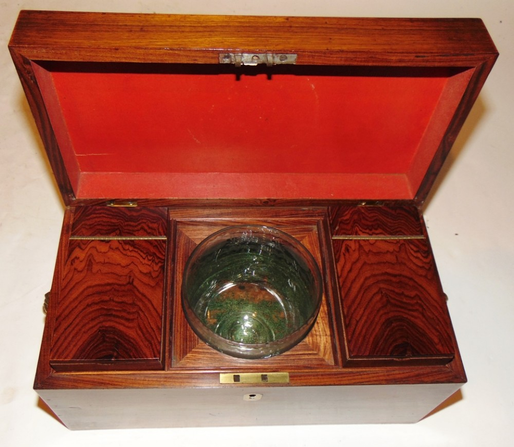 regency kingwood tea caddy circa 1820