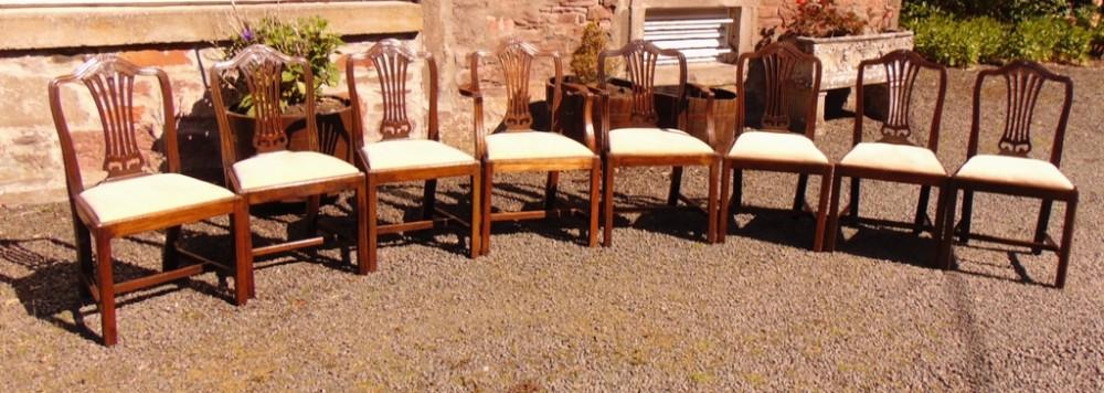 set 8 hepplewhite style mahogany chairs circa 1880