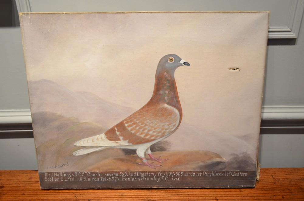 oil painting of a racing pigeon