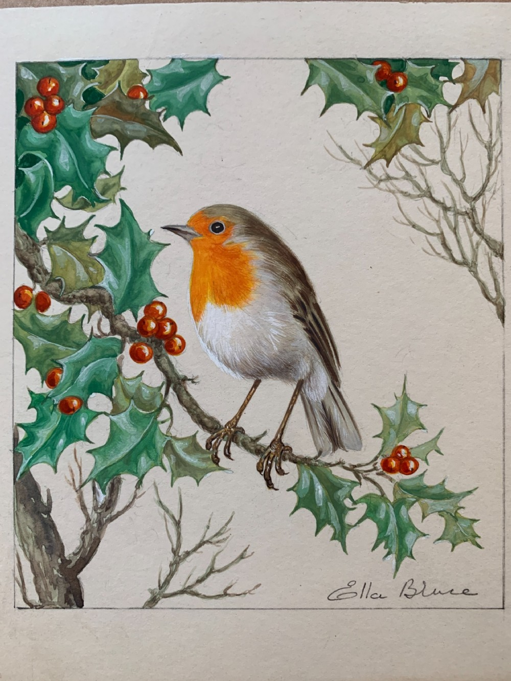 ella bruce english watercolor of a robin on a holly bush