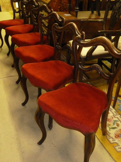 set of 6 victorian rosewood chairs - photo angle #5