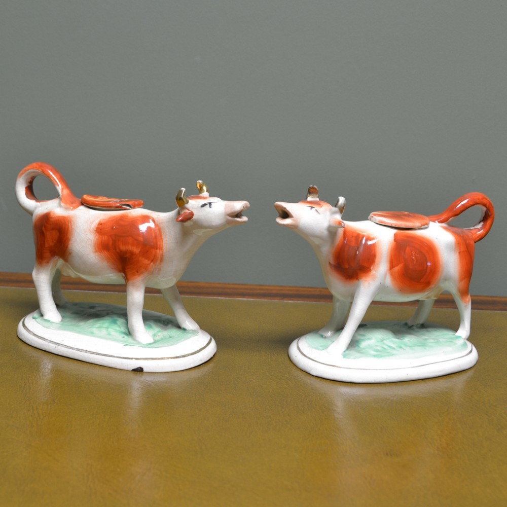 near pair victorian staffordshire pottery cow creamers