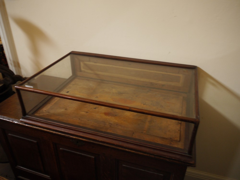 Antique Table Top Mahogany Shop Display Case 253205
