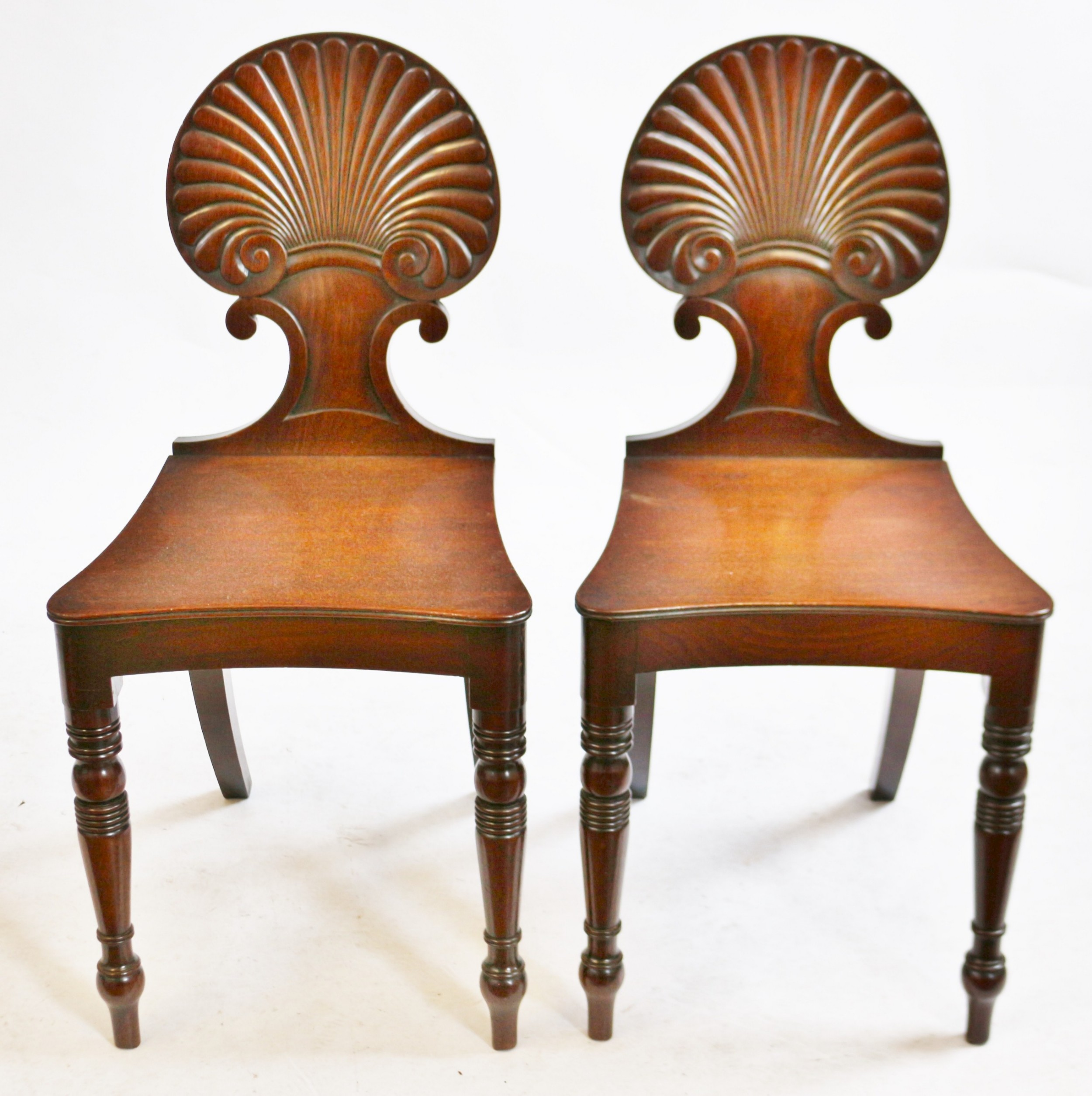 regency mahogany pair of hall chairs with shell carved back
